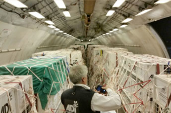 air-cargo-south-africa
