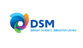logo-dsm-air-freight-domestic.png