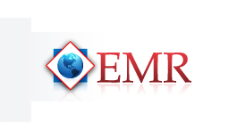 logo-emr-air-freight.png